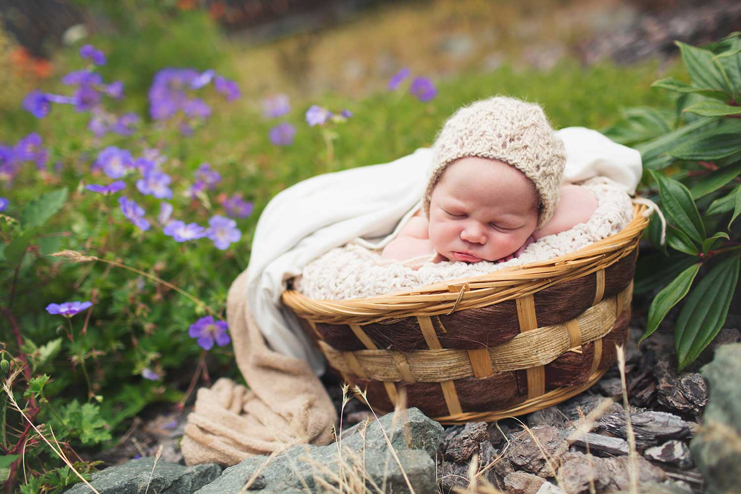 Sleeping infant snuggled in a basket with blankets and a knit hat with a garden and purple flowers in the background.